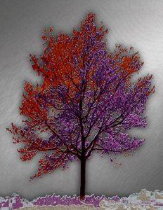 Tree_A_01