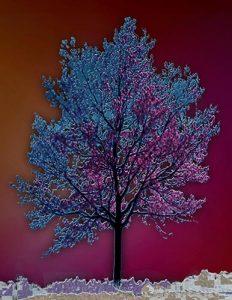 Tree_A_08
