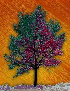 Tree_A_14